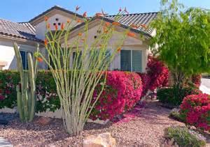 desert landscaping how to create fantastic desert garden