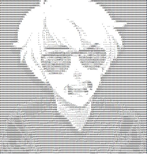 Ascii Art Meme - image 666265 ascii art know your meme