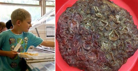 students disgusting school lunch picture  viral