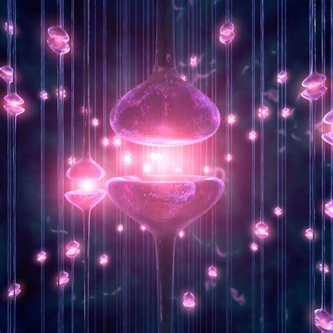 imagenes que se mueven para diapositivas multiverso fractal