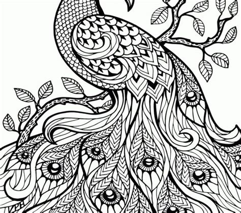coloring pages for adults ideas colouring pages free download kids coloring page