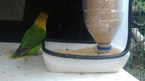 Tempat Pakan Burung Gantung tempat pakan hewan model kayu update daftar harga