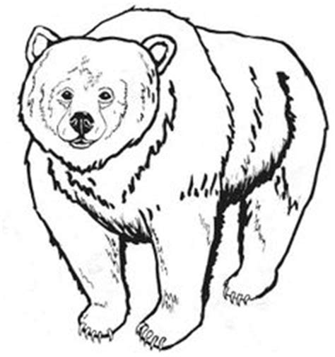 bear hunt coloring page 1000 images about fiar we re going on a bear hunt on