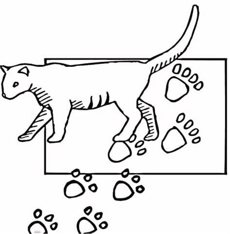 paw print coloring page cougar paw coloring pages to print coloring pages