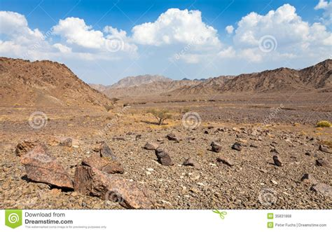 stone desert stone desert royalty free stock photos image 35831868