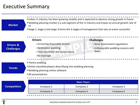Mba Project Executive Summary Sle by Executive Summary Powerpoint Template Pictures