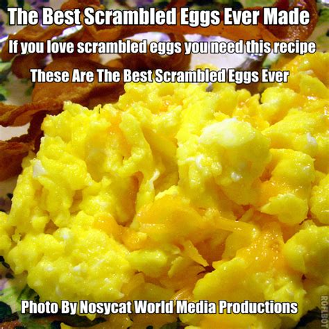 how to make really scrambled eggs the best scrambled eggs you will taste are here cooking and recipes