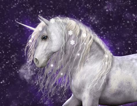 unicorn images 13 stock images of unicorns that will blind you with