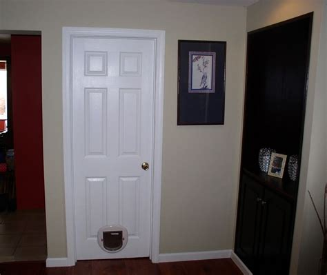 Pre Painted Interior Doors by Pin By Craftpro Contracting On Interior Renovations
