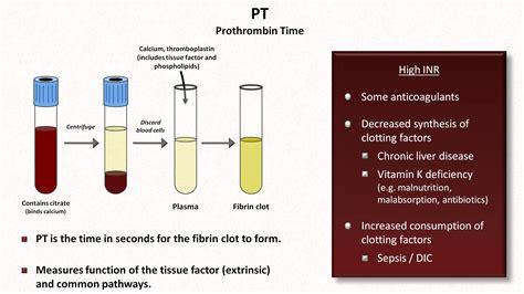 pt inr color hemostasis lesson 4 tests inr ptt platelets