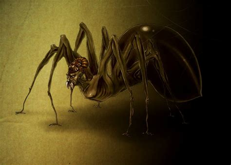tricksters and the trickster god tricked by the light children s story why anansi the spider always hides at