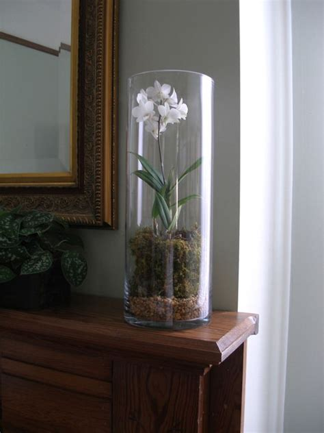 Clear Vase Centerpiece Ideas by Using Cylinder Clear Glass Vase For