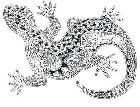 lizard coloring pages for adults even a gecko zentangles and line designs pinterest