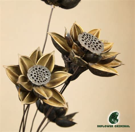 dry flowers decoration for home free shipping lotus wood dry lotus natural dried flowers