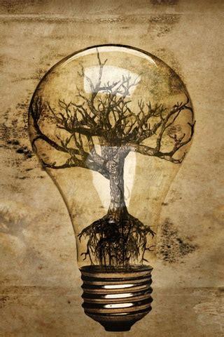 abstract lightbulb tree roots crataegus bonsai
