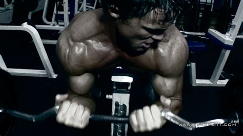 forearm foundation workout greg plitt official web