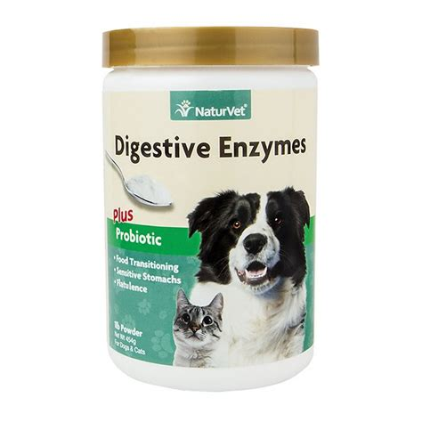 digestive enzymes for dogs naturvet digestive enzymes plus probiotic cat powder supplement 1 lb chewy