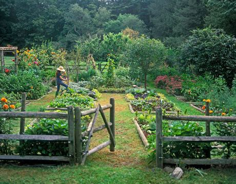 backyard organic gardening organic garden is really a great way to begin living green pros and cons of biomass