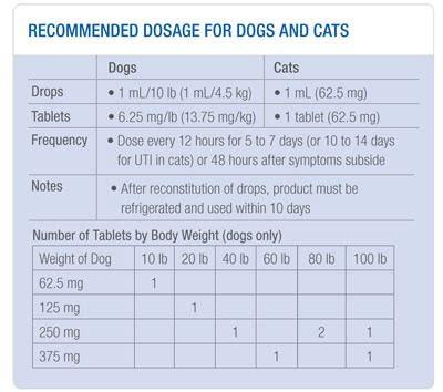 clavamox dosage for dogs clavamox side effects cats