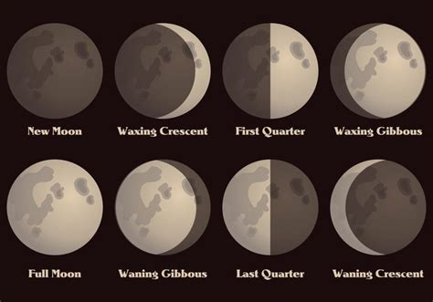 moon phase december 2016 moon phase calendar moon schedule free