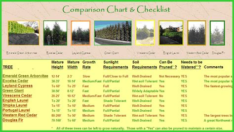 tree varieties comparison instant privacy tree landing page