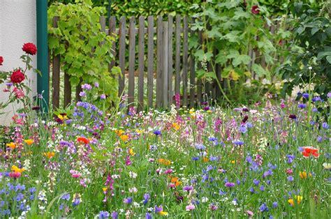 Creer Un Jardin Fleuri Toute L ée by Prairie Fleurie Une Prairie Fleurie Pour Mon Jardin
