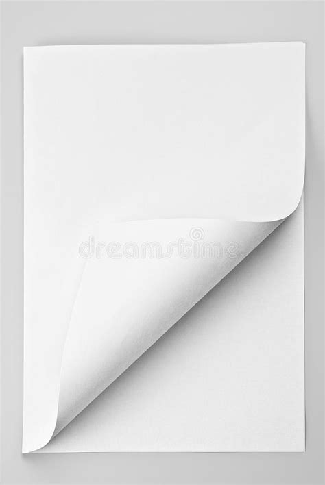 Folded Sheet Of Paper - folded sheet of paper with curled corner stock image
