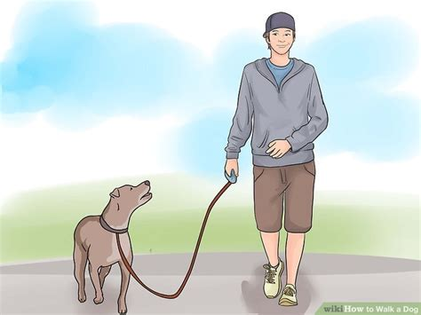 how to two dogs to walk on a leash how to walk a 12 steps with pictures wikihow
