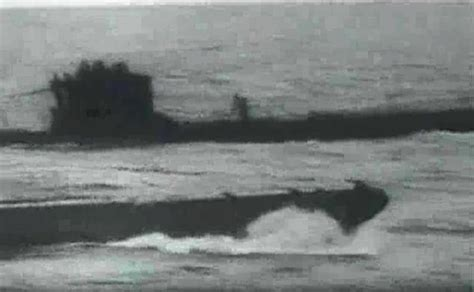 german u boats south africa writer proves that discovery aired fake image of megalodon