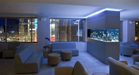 transform the way your home looks using a fish tank transform the way your home looks using a fish tank
