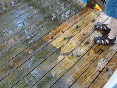 thompsons waterseal cleaner waterproofer review