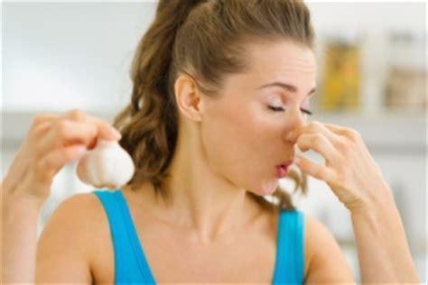 Was Tun Gegen Geruch Im Kühlschrank by Schokolade Gegen Knoblauchgeruch