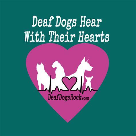 deaf dogs rock 10 reasons why deaf dogs rock deaf dogs rock