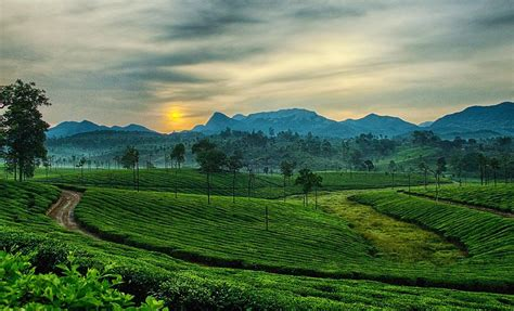 Landscape Photography In India Surreal Landscape In Ooty India Amazing Photography