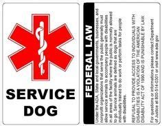 service dog housing laws 1000 images about tips health and beauty on pinterest