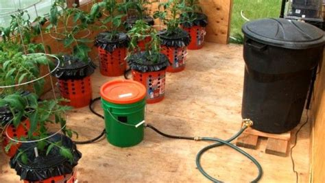 self watering garden containers self watering container garden system organic gardening