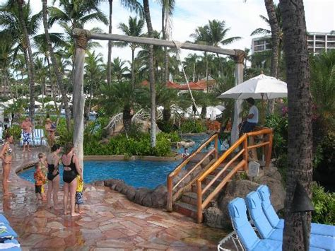 pool rope swing rope swing into pool picture of grand wailea a waldorf