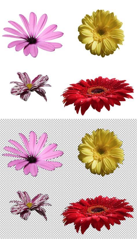 flower wallpaper effect wallpaper flower backgrounds for photoshop