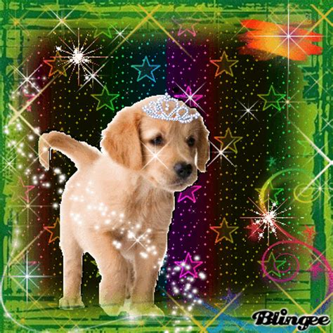 puppies ta ta baby picture 100833214 blingee