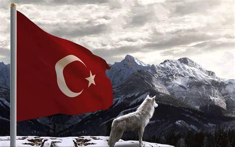 turk bayragi ve bozkurt kurt resimli t 252 rk bayrakları indir t 252 rk bayrakları