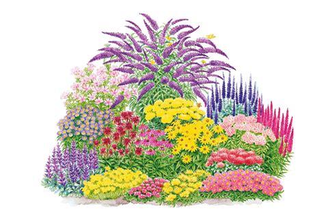 pflanzen set garten pflanzen set 187 schmetterlings set 171 17 tlg schwab