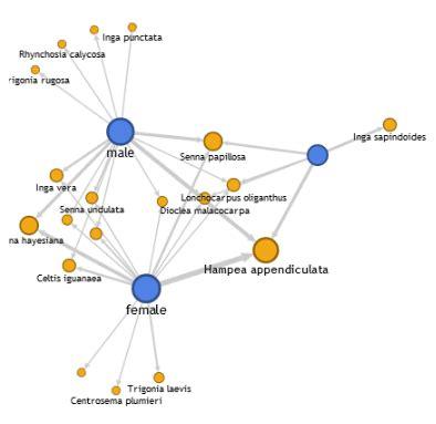 network diagram app fusion tables network graph an experimental app