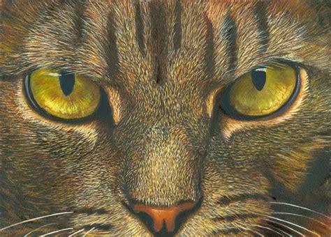 cuadros modernos pinturas art 237 sticas figurativas victor dibujo de gato en pinturas de gato arte con m 225 s de