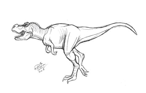 Drawing T Rex Dinosaur by How To Draw T Rex