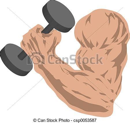 imagenes brazos fuertes stock de ilustraciones de fuerte brazo muscular brazo
