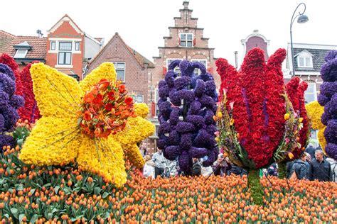ci di fiori olanda tutti gli eventi della primavera in fiore in olanda