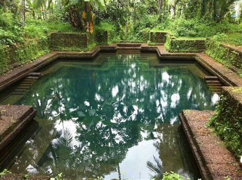 kerala home design with swimming pool keralahousedesigner com house ponds and swimming pools