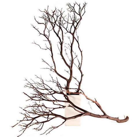 Making Of Home Decorative Items 12 natural manzanita branches 24 quot