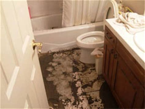 water backing up in bathtub water backup what s covered what s not