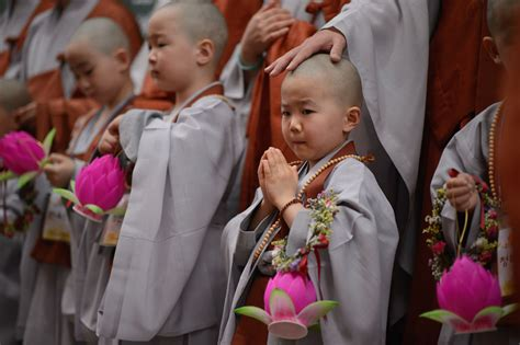 The Child children becoming buddhist monks